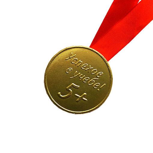 """Шоколадная медаль на ленте """"Успехов в учёбе"""" ( лента красная )"""